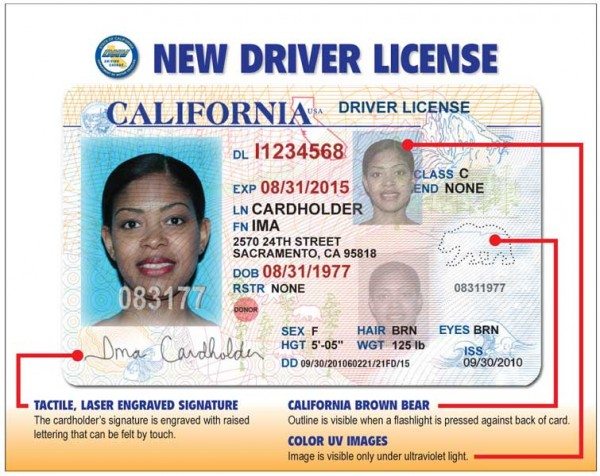 still waiting for your driver's license? | road warrior