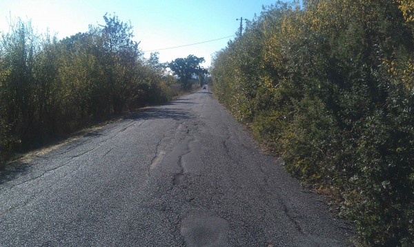 The crumbling lanes of Keiser Avenue in Rohnert Park are hemmed in by weeds, bushes and blackberry bushes in some sections. It was Sonoma County's worst road in 2012, based on Road Warrior reader votes. Road Warrior photo